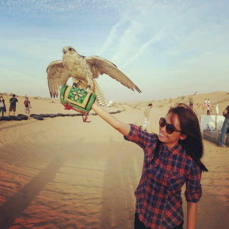 Dubai Desert Safari with BBQ Dinner & Falcon Experience